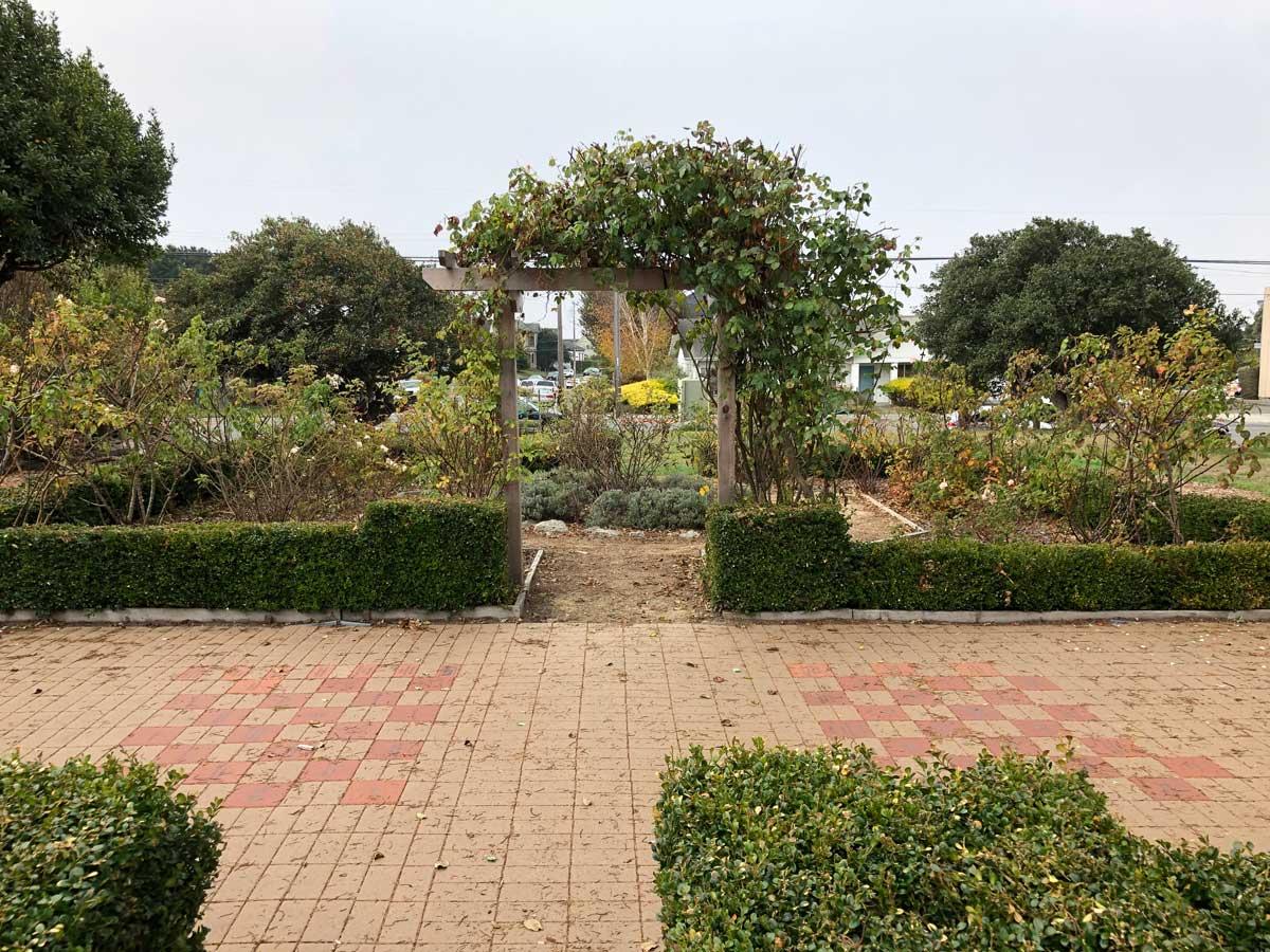Melanie Kuhnel Heritage Rose Garden